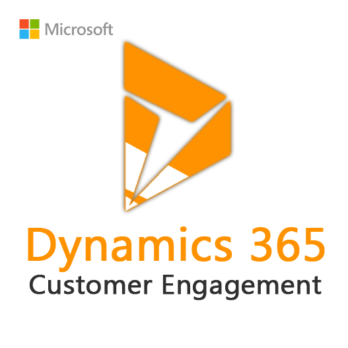 Dynamics 365 Customer Engagement Plan (12 Months)