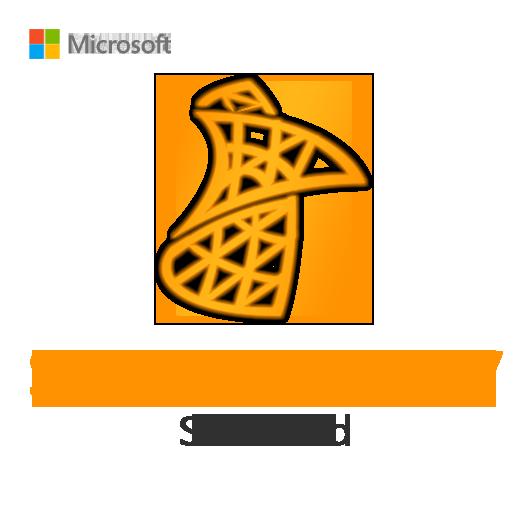 SQL Server 2017 Standard License Key