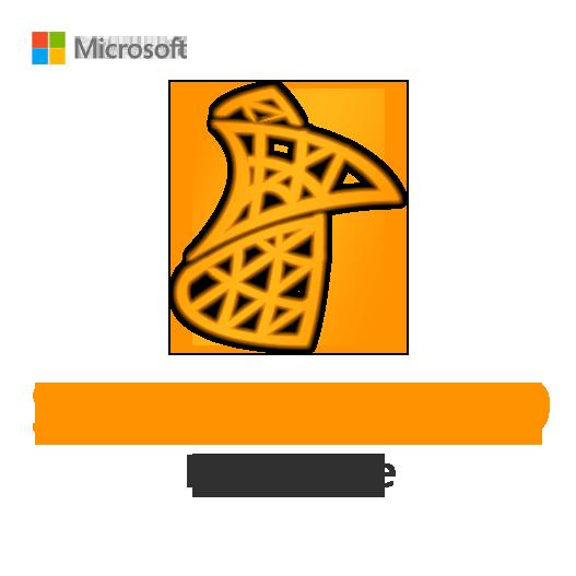 SQL Server 2019 Enterprise License Key