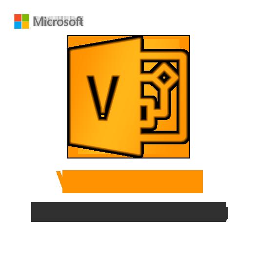 Visio 2016 Professional Binding License Key